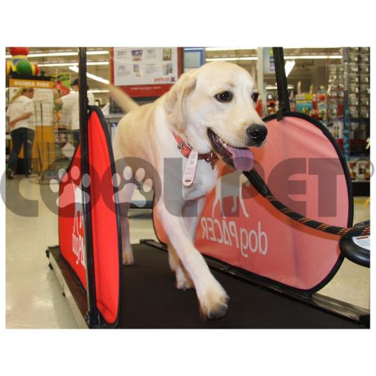 Tapis roulant per grandi cani DOG PACER
